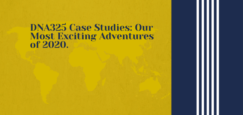 DNA325 Case Studies: Our Most Exciting Adventures of 2020